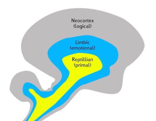 marketing communications Triune brain